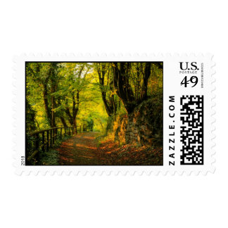 Forest Path Postage