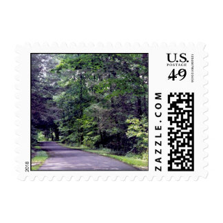 Forest path - postage