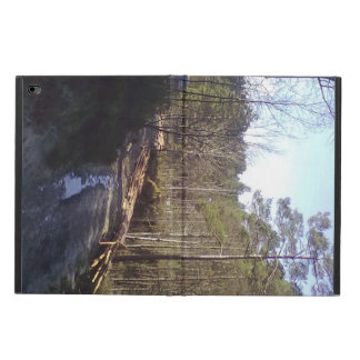 Forest Path Powis iPad Air 2 Case