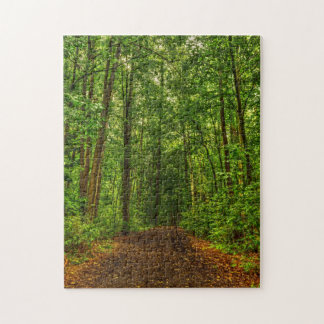 Forest Path Puzzel Jigsaw Puzzles