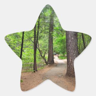 Forest Path Star Sticker
