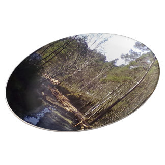 Forest Path stord.jpg Plate