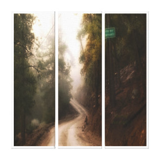 Forest Path Through Tall Pines Gallery Wrapped Canvas