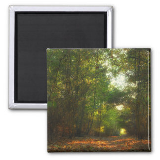 Forest Pathway fridge magnet