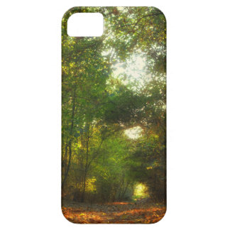 Forest Pathway iPhone 5 Case Mate case
