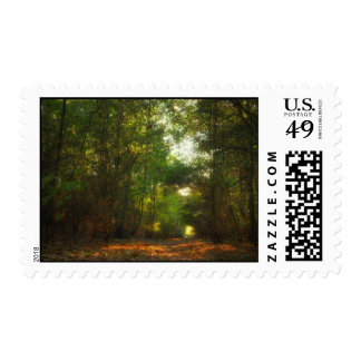 Forest Pathway postage stamps