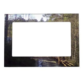 Forest photo magnetic frame
