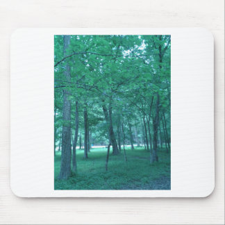 Forest Photo Mouse Pad