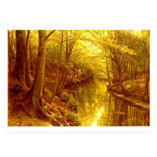 forest-pictures-8 tarjetas postales