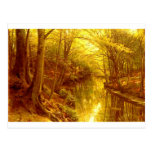 forest-pictures-8 postcards