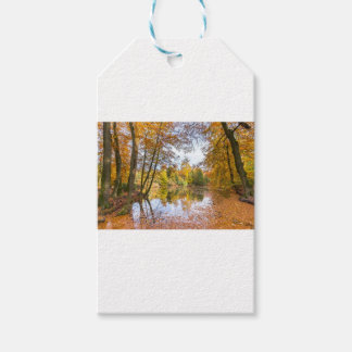 Forest pond covered with leaves in winter season gift tags