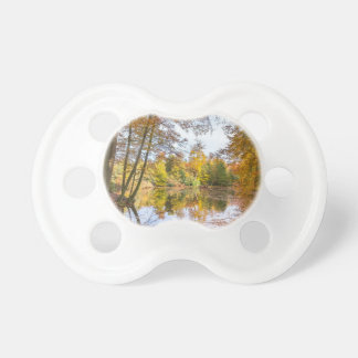 Forest pond covered with leaves in winter season pacifier