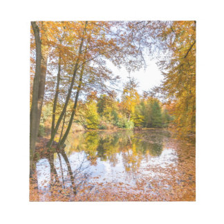 Forest pond covered with leaves of beech trees notepad