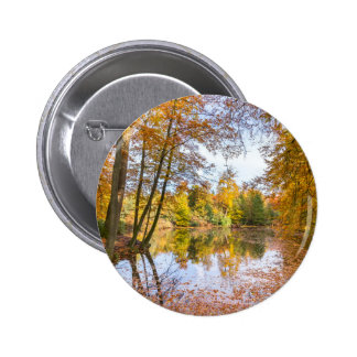 Forest pond covered with leaves of beech trees pinback button