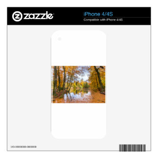 Forest pond covered with leaves of beech trees skin for iPhone 4
