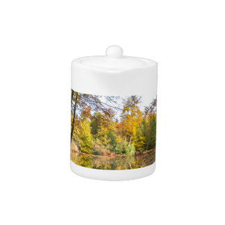 Forest pond covered with leaves of beech trees teapot