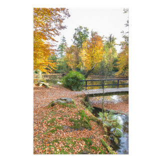 Forest pond with bridge in autumn colors.jpg stationery