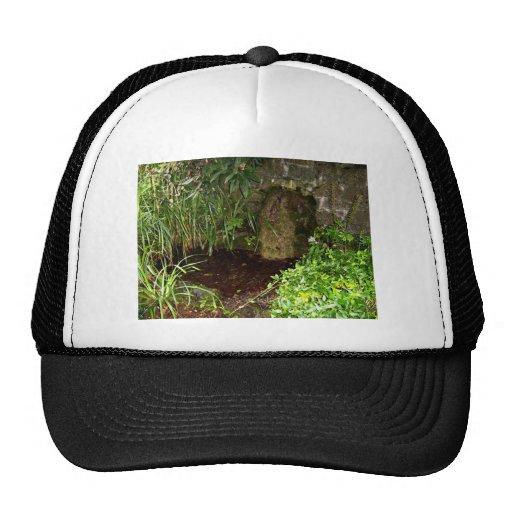 Forest pool trucker hat
