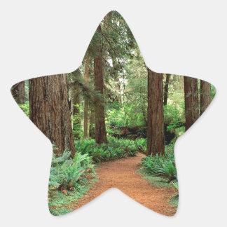 Forest Prairie Redwoods Park Star Sticker