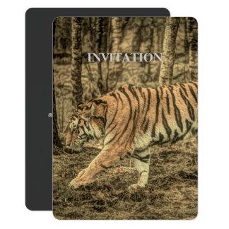 Forest predator wildlife Majestic Wild Tiger Card