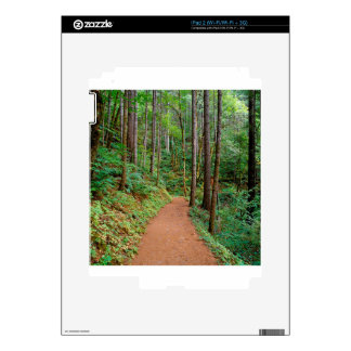 Forest Quiet Trail Columbia River Gorge Skin For The iPad 2