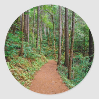 Forest Quiet Trail Columbia River Gorge Stickers