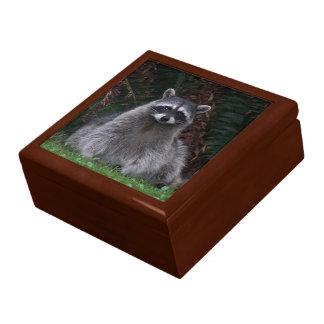Forest Raccoon Keepsake Box