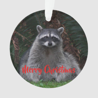Forest Raccoon Holiday Acrylic Ornament
