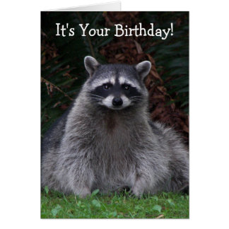 Forest Raccoon Photo Birthday Card