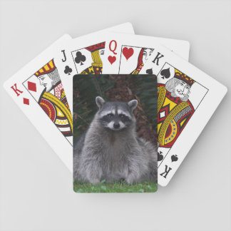 Forest Raccoon Photo Deck Of Cards