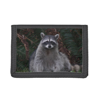 Forest Raccoon Photo Trifold Wallets