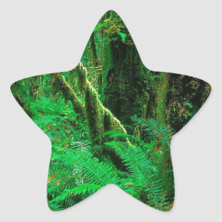 Forest Rain Olympic Star Sticker