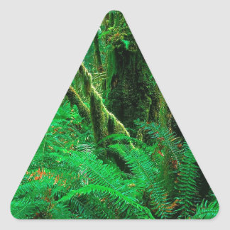 Forest Rain Olympic Triangle Stickers