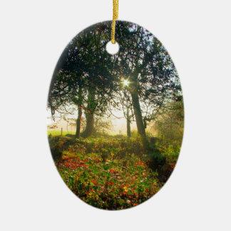 Forest Rainbow Christmas Ornament