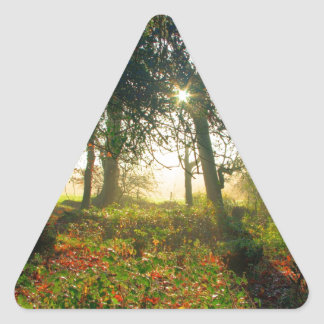 Forest Rainbow Stickers