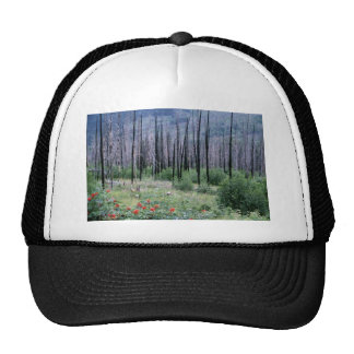 Forest recovery trucker hat