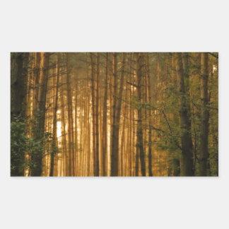 Forest Rectangular Sticker