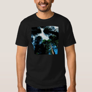 Forest Redwoods Sequoias T-Shirt