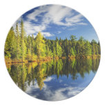 Forest reflecting in lake dinner plates