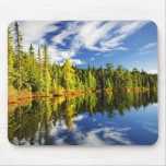 Forest reflecting in lake mousepad