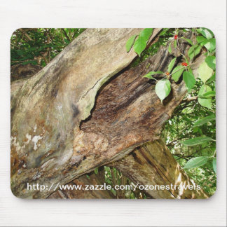 Forest Repose Mouse Pad