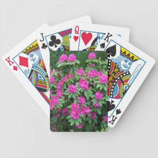 Forest Rhododendron Deck Of Cards