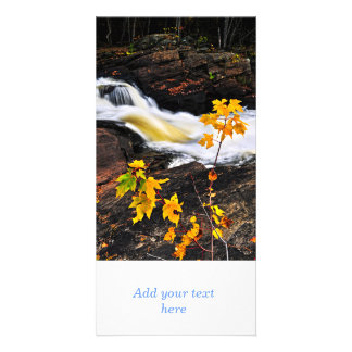 Forest river in the fall photo card
