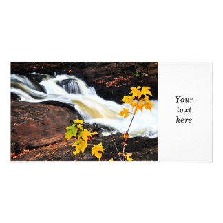 Forest river in the fall photo greeting card