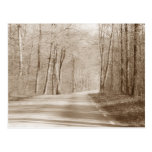 Forest road post card