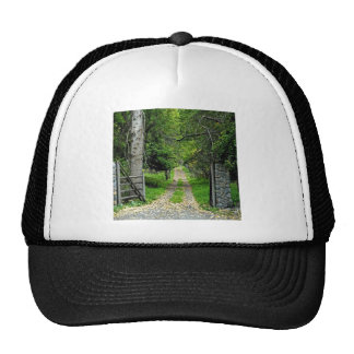 Forest Road To Enchanted Garden Trucker Hat