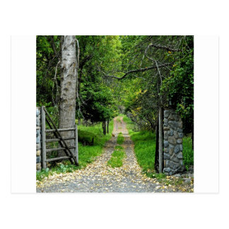 Forest Road To Enchanted Garden Postcard