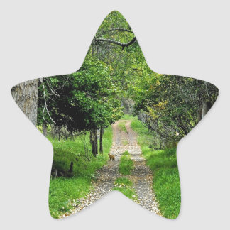 Forest Road To Enchanted Garden Star Sticker