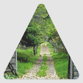 Forest Road To Enchanted Garden Triangle Sticker
