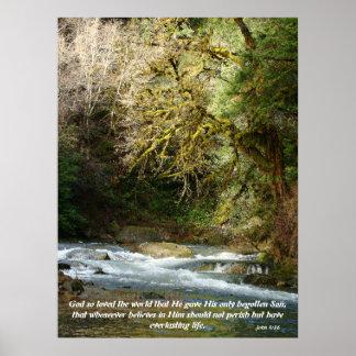 Forest & Rushing River John 3:16 Print